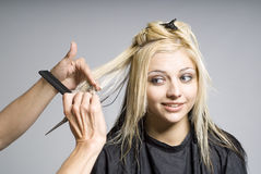 tnący włosiany fryzjer Obraz Stock