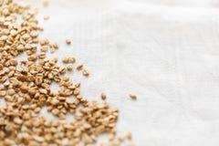 Tnąca deska z pszenicznymi jagodami Obraz Royalty Free