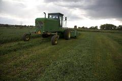 tnący alfalfa windrower Obrazy Stock