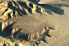 Tne kolibri, Nazca linjer, Peru Arkivfoto