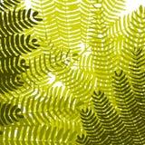 tło abstrakcjonistyczny liść Zdjęcie Stock