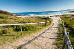 To the Beach, NSW, Australia Royalty Free Stock Image