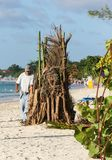 Prepare a camp fire on Negril Beach royalty free stock photos