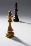 To Chess Kings on Gray Royalty Free Stock Photography