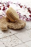 To exfoliate with pampering and femininity Stock Images