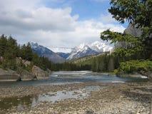 to góry skaliste kanadyjskiej Zdjęcie Stock