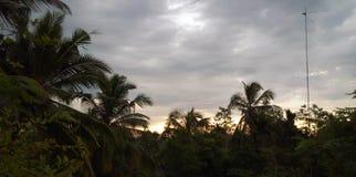 To jest lasowy niebo w Sri Lanka Fotografia Stock