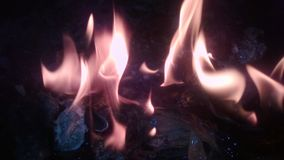 To jest ognisko obraz stock