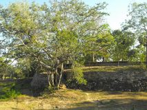 TO JEST wizerunku YAPAHUWA skały PIĘKNY forteca SRI LANKA fotografia stock