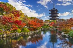 To-ji Pagoda. In Kyoto, Japan during the fall season Royalty Free Stock Photography