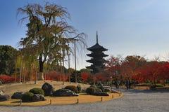 To-ji Pagoda in Kyoto, Japan during the fall season. Royalty Free Stock Photography
