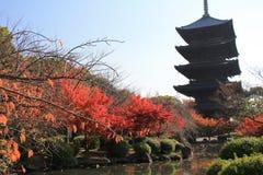 To-ji Pagoda in Kyoto, Japan during the fall season. royalty free stock photos