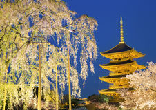 To-ji pagoda at night. Stock Image