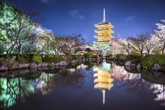 To-ji Pagoda in the Spring royalty free stock photography