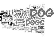 When To Not Adopt A Dog Word Cloud Royalty Free Stock Image
