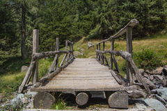To the other side. Log bridge on a mountain stream in a glade of pine trees stock photos