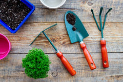 To plant flowers. Gardening tools and pots with soil on wooden background top view Royalty Free Stock Image