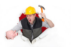 About to smash a piggy bank. Tradesman about to smash a piggy bank Stock Images