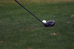 About to Swing. Golf ball and club in the grass Royalty Free Stock Photo