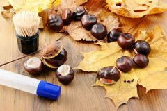 To tinker handmade figures of chestnuts and glue Stock Photo