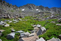 Almost to the Top. Rocky cliffs with boulders laying around in a meadow of yellow flowers Royalty Free Stock Images