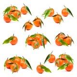 Daily to vitamins. Fresh tangerines with vitamin C Stock Photo