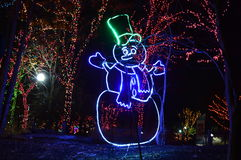 To walk through the luminous display at New Year's Eve at Lincoln Park Zoo in Chicago. Chicago, USA, 31st December 2016 : To walk through the luminous Royalty Free Stock Images