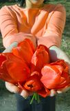 It to you!. Bouquet of tulips Royalty Free Stock Photo