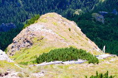 Toaca Peak, Ceahlau Massif. Communism-Free Zone on Toaca Peak (1904m) in the Ceahlău Massif - home of the ancient Dacians, often called 'The Romanian Olympus Royalty Free Stock Images