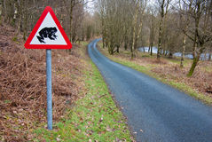 Toad Crossing road sign Royalty Free Stock Images