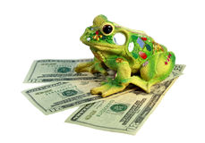 Toad and dollars Royalty Free Stock Photos