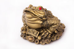 Toad Feng Shui Royalty Free Stock Photos