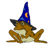 Toad magic Royalty Free Stock Images
