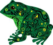 The toad with a pattern on a body, a frog sits in a professional fir-tree, an animal from a bog, Royalty Free Stock Photos