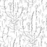 Toadflax безшовного Linaria цветочного узора vulgaris, общее, желтое toadflax или масл-и-яичка вид toadflax Стоковые Фото