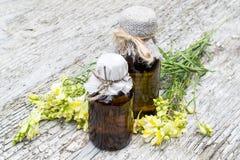 Toadflax común (Linaria vulgaris) y botellas farmacéuticas Fotos de archivo libres de regalías