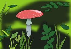Toadstool. A toadstool and green leafs and grass Stock Photos
