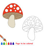 Toadstool cartoon. Page to be colored. Stock Image