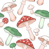Toadstool design Stock Photo