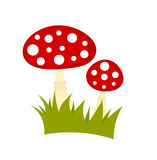 Toadstools mushrooms vector Royalty Free Stock Images