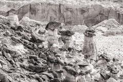 Toadstools Rimrock черно-белые Стоковое Изображение RF