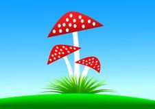 Toadstools rojos ilustración del vector