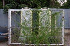 Toalete abandonado Foto de Stock