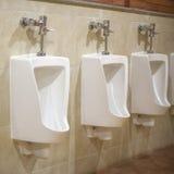 Toalete cerâmico branco fixado na parede no banheiro telhado marrom Imagem de Stock