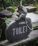 Toalete da floresta do macaco Foto de Stock