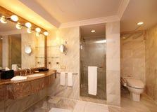 Toalete espaçoso Imagem de Stock Royalty Free