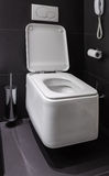 Toalete moderno no banheiro Fotografia de Stock Royalty Free