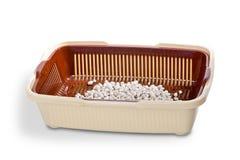 Toalete para o gato Imagens de Stock Royalty Free