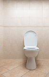 Toaletowy puchar Obraz Royalty Free