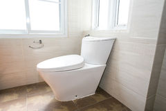 toalett Royaltyfria Bilder